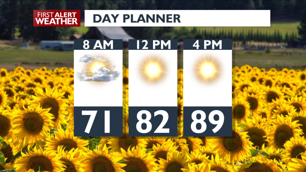 Day Planner August 21