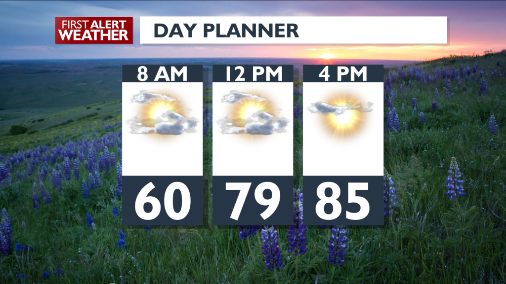 Day Planner August 25