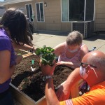 Kxly Extreme Team Gardens For Grands 5