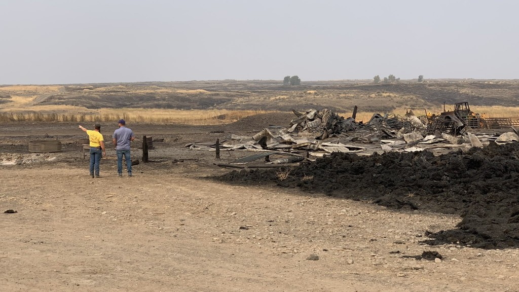 Cattle Ranch Burned In Whitney Fire