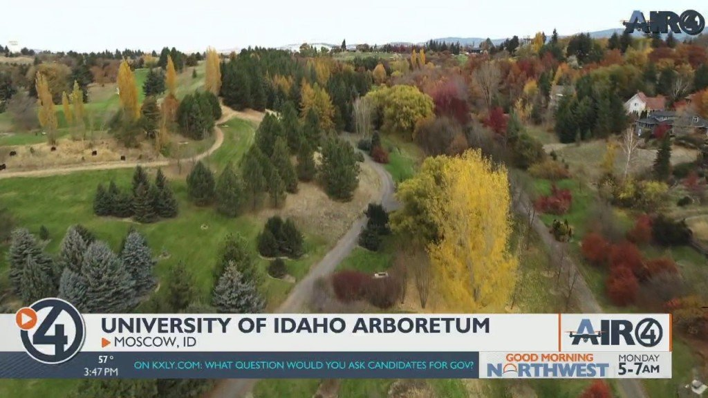Air 4 Adventure: University Of Idaho Arboretum
