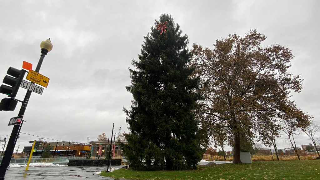 Riverfront Park Christmas Tree