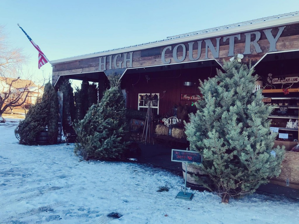 Get the Green Bluff Christmas experience at High Country Orchard