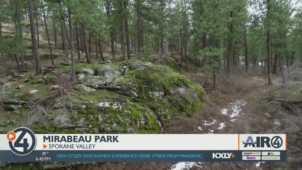 Air 4 Adventure: Mirabeau Point Park