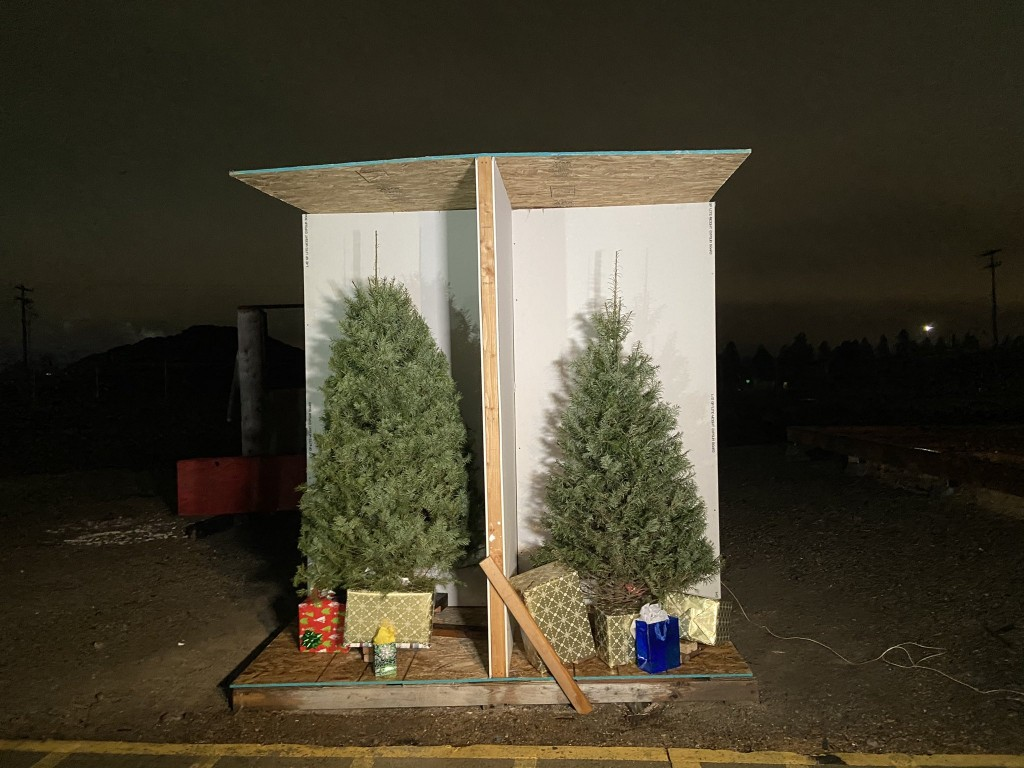 How a live Christmas tree can go from decorative to dangerous