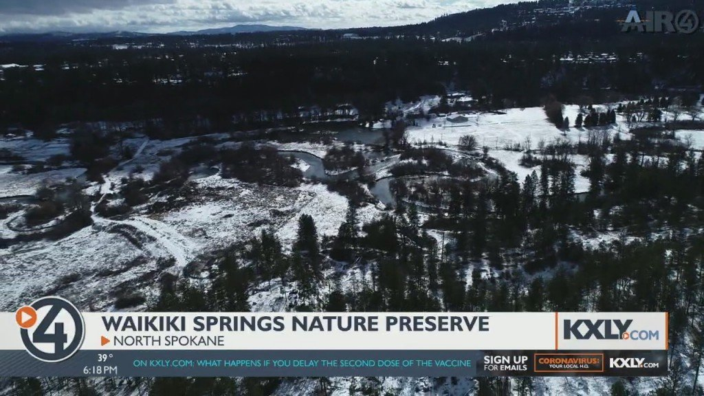 Air 4 Adventure: Waikiki Springs Nature Preserve
