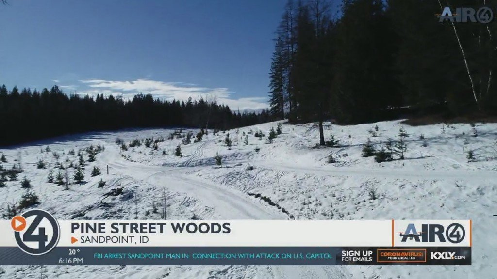 Air 4 Adventure: Pine Street Woods