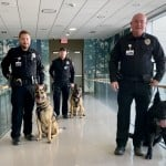 Group K9 Team Smiling