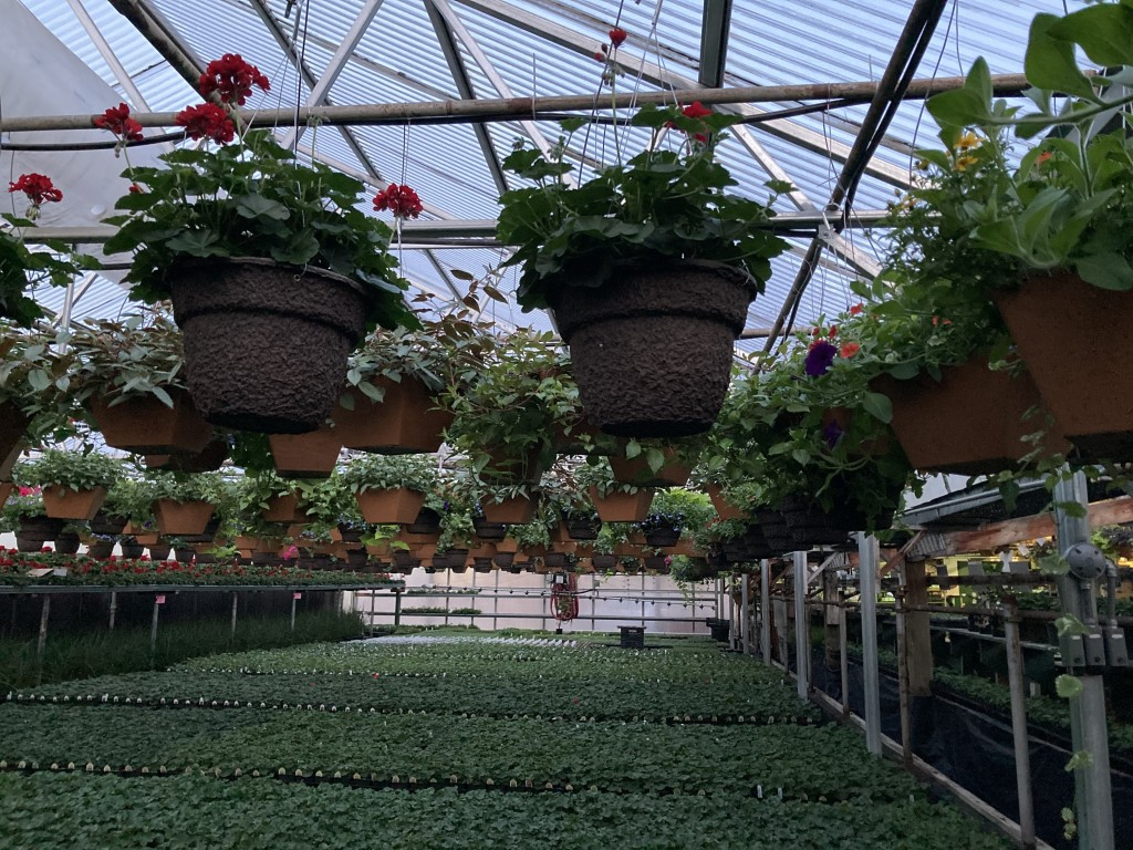 Here's what local experts say you need to know to have a successful planting season.
