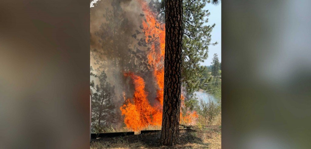 Wildfire in Liberty Park
