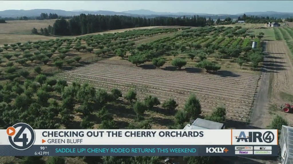 Air 4 Adventure: Chery Orchards