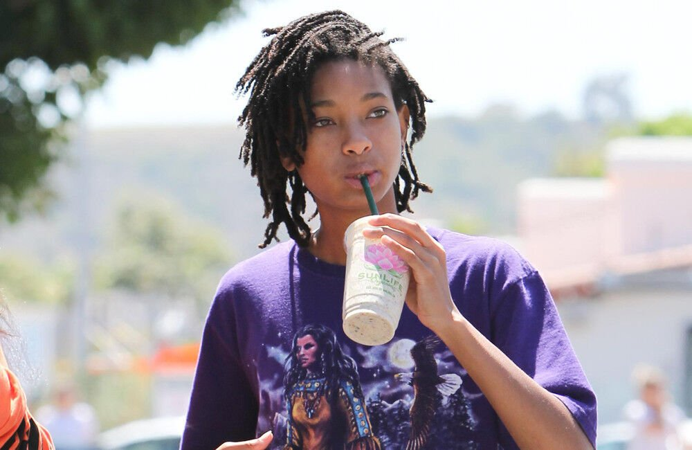 Willow Smith's Mental Health Is 'in A Fragile State'