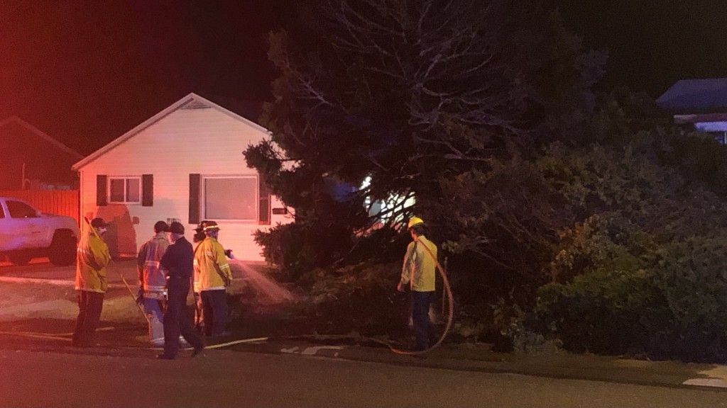 Richland Homes Evacuated After Firework Catches Tree On Fire