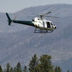 Officials Hunt Grizzly That Killed Camper In Montana Town