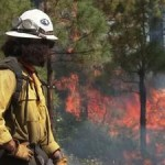 Massive Wildfires In Us West Bring Haze To East Coast