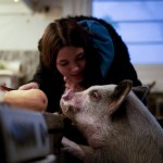 Some Argentines Turn To Unusual Pandemic Pets For Comfort