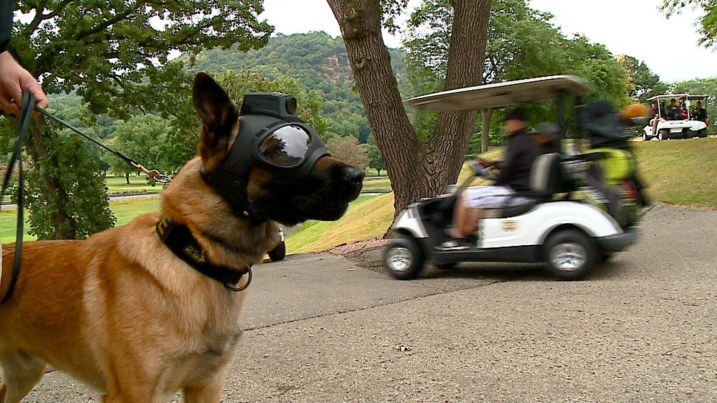 Putt'n 4 Pooches raises funds for La Crosse Police K9s