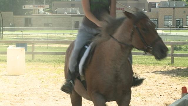 Young horse enthusiasts practice their horse-handling skills for an upcoming fair