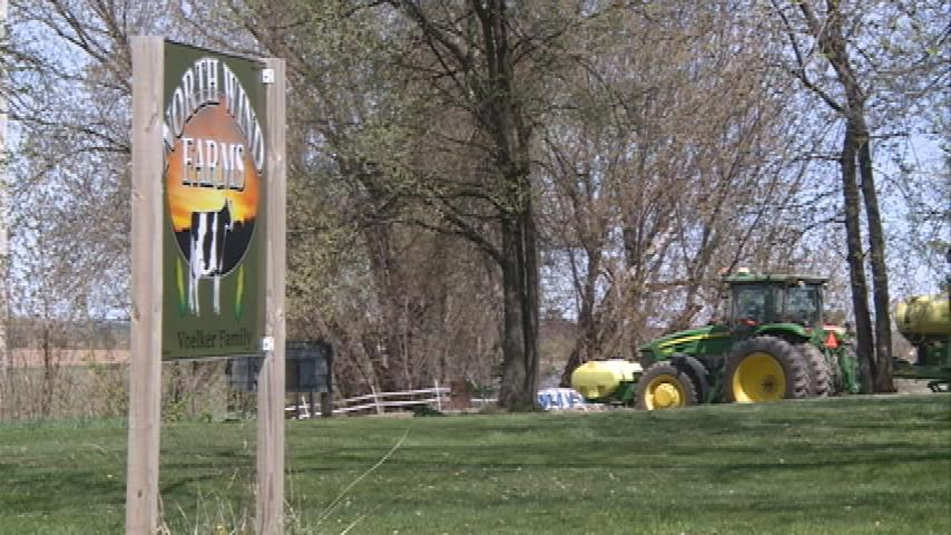 America's Dairyland: Farmers try something new amid record bankruptcies, closures