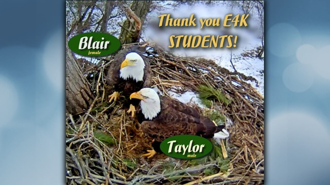 Eagles4Kids students name eagles Blair, Taylor