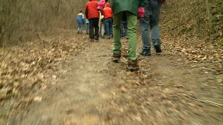 Bluff hike highlights the beauty of the Coulee Region