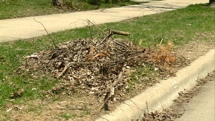 La Crosse residents can get rid of brush and branches