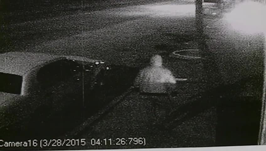 Police in Houston County searching for burglar