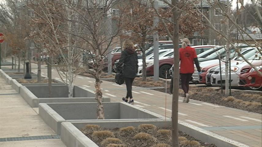 Student volunteer to clean litter from Western Technical College campus in La Crosse