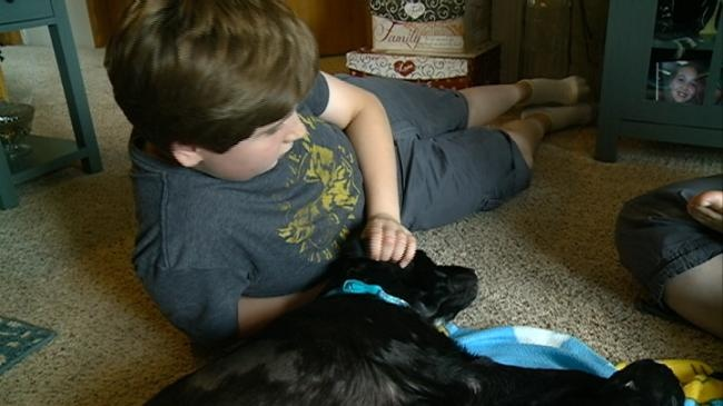 Selfless act gives boy living with autism a service dog