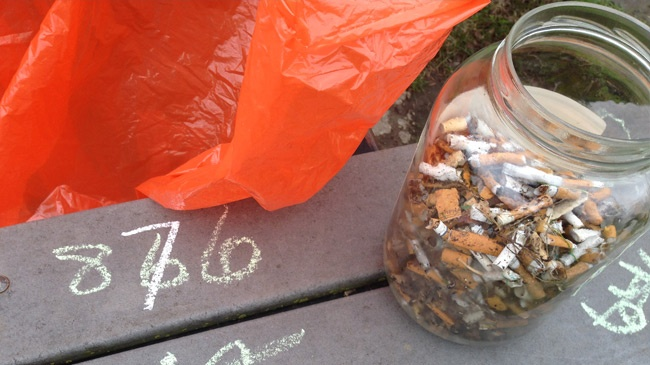 La Crosse students pick up more than 800 cigarette butts from park