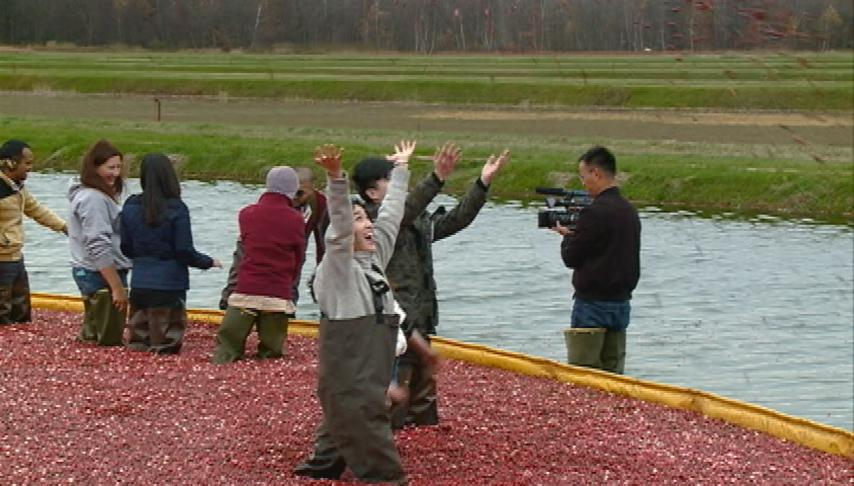 Wisconsin cranberry industry hopes to send more berries overseas