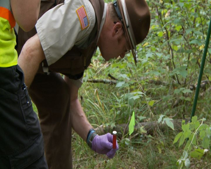 Wisconsin DNR conducting training to investigate hunting-related incidents