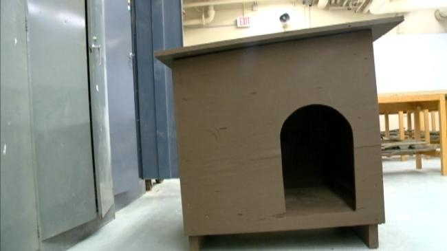 Assignment: Education – Student volunteers provide pet houses