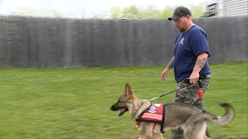 Dog helps Tomah veteran deal with PTSD