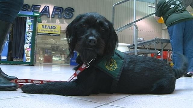 Capable Canines of WI hosts 5K run/walk at Valley View Mall