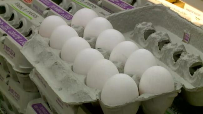 Eggs, turkey prices increasing due to bird flu