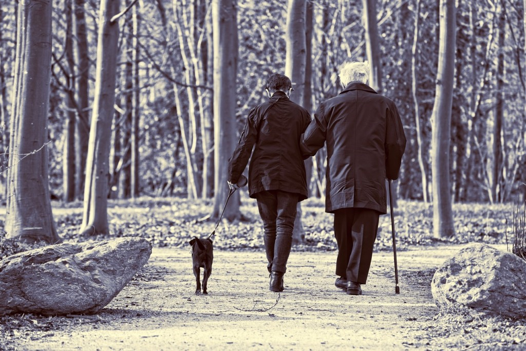 Study: Minnesota ranked highly for life expectancy