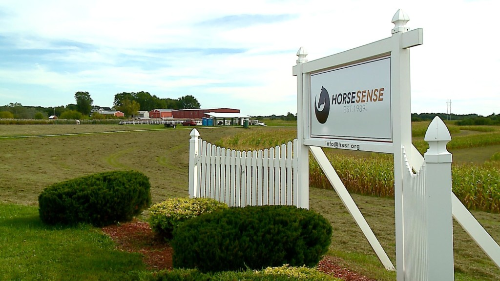 Fall Harvest Festival benefits HorseSense therapy program