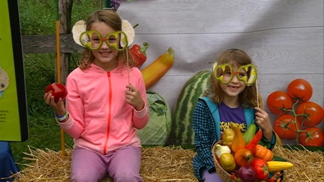 Fall Festival on the Farm connects kids with healthy food