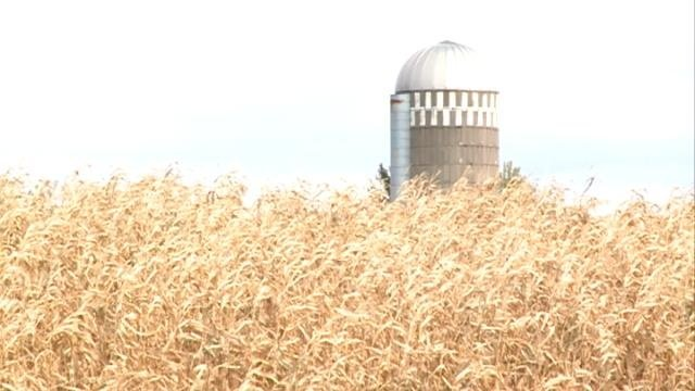 Officials: Weather delaying Fall harvest in Wisconsin