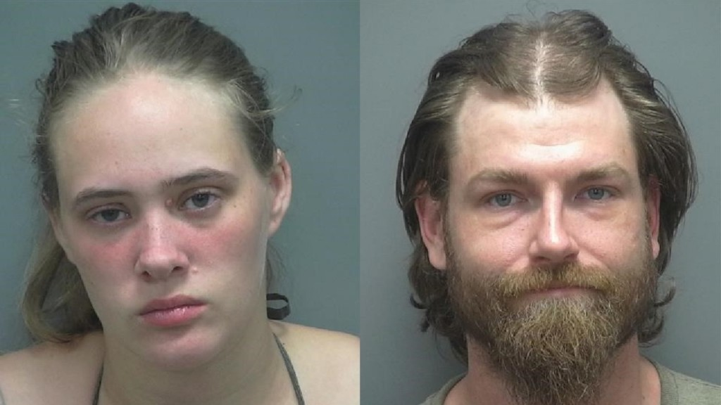 Janesville pair charged with felony mistreating a dozen puppies
