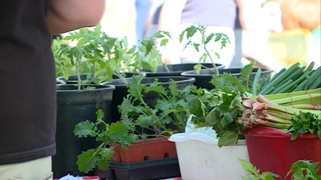 Cameron Park Farmers Market kicks off