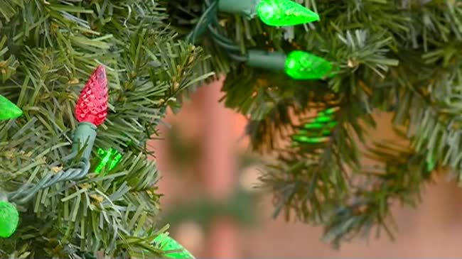 City of La Crosse to begin picking up old Christmas trees Jan. 8th