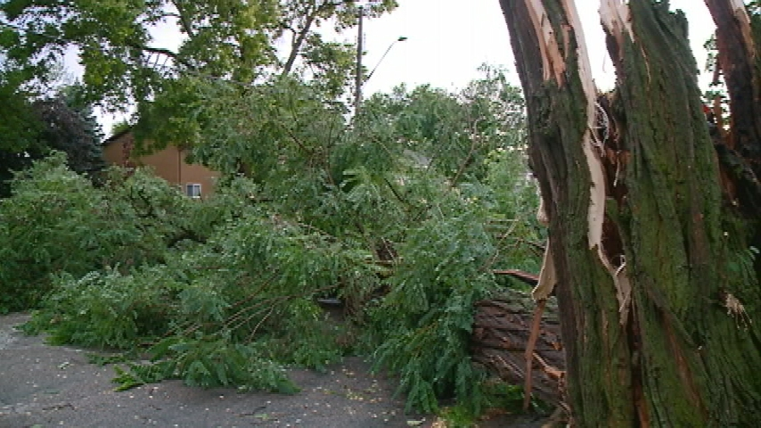 Severe storms cause extensive damage