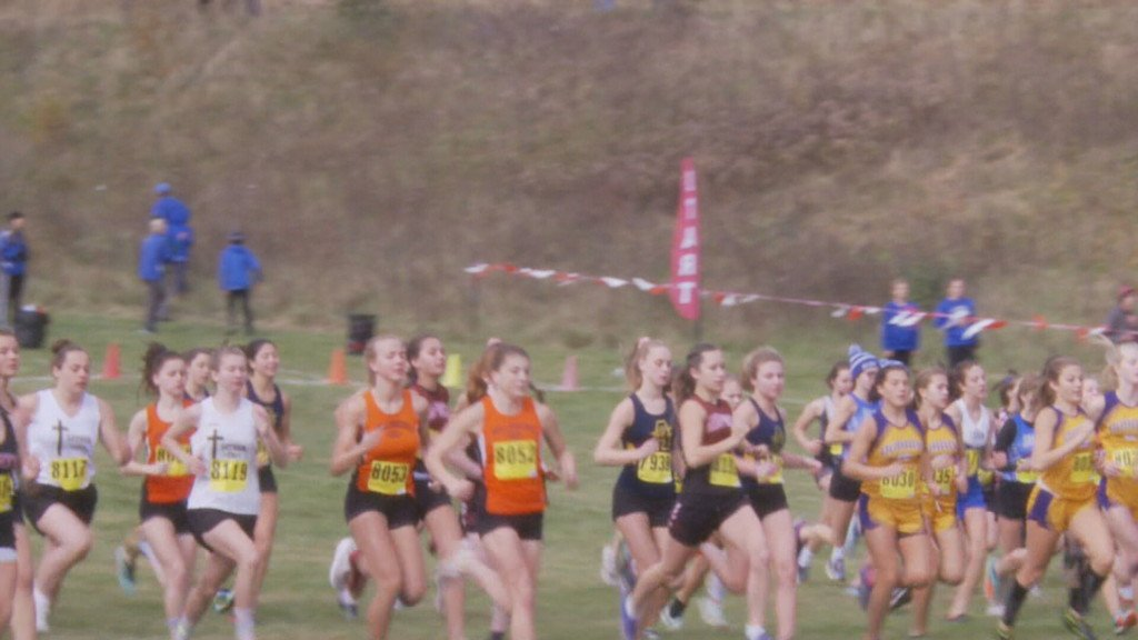 HS Cross Country: All local state qualifiers