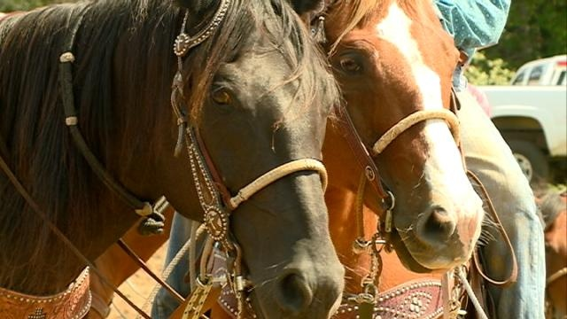 Hundreds of teens compete in rodeo