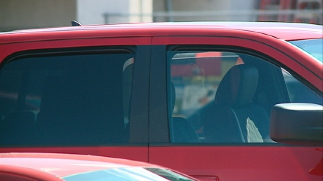 Humane Society warns against leaving pets in cars
