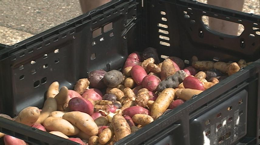 Free produce distribution hosted by Hunger Task Force of La Crosse