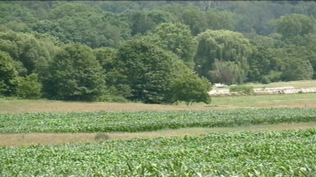 Heat-related death confirmed in Richland County