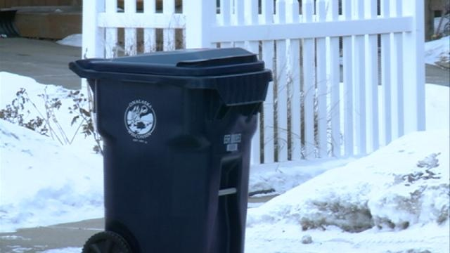 New garbage and recycling bins at a high cost